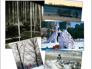 Newsletter Fall 2007/Winter 2008 – Snapshots of Winter in Wisconsin