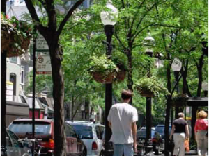 National League of Cities Links Economic Benefits to Sustainable Cities