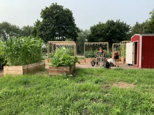 Leopold Green Schoolyard – Video Tour and Final Update!